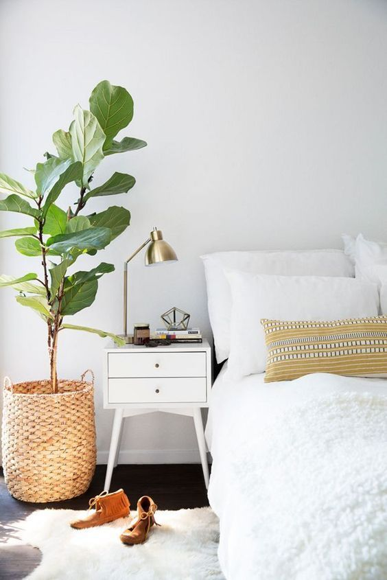 Love this combo! Bedroom, side table, big leafy plant