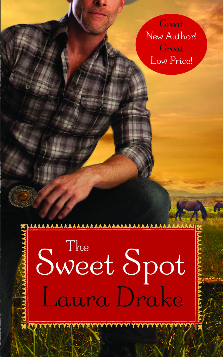 The Sweet Spot, first in my Sweet on a Cowboy series, set in the world of professional bull riding. 2014 RITA winner for Best First Book.   http://dld.bz/dAAAc