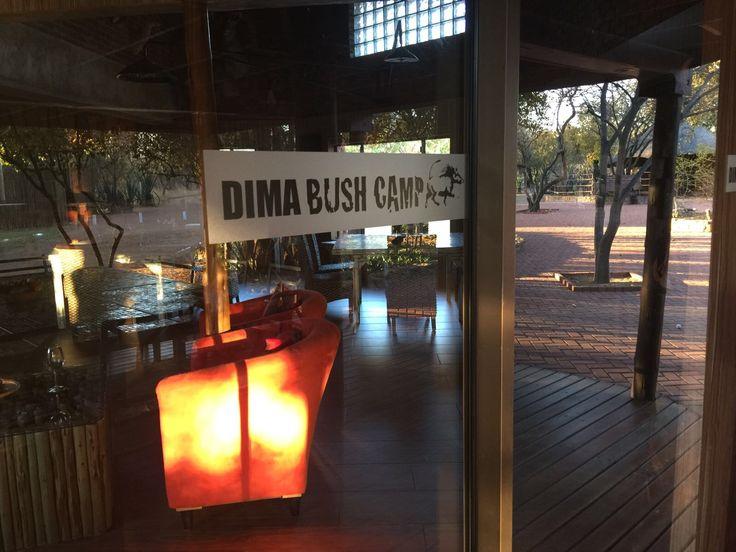 DIMA BUSH CAMP - South Africa Lodge for Safari photo, golf, holidays ...https://www.flickr.com/people/dimabushcamp