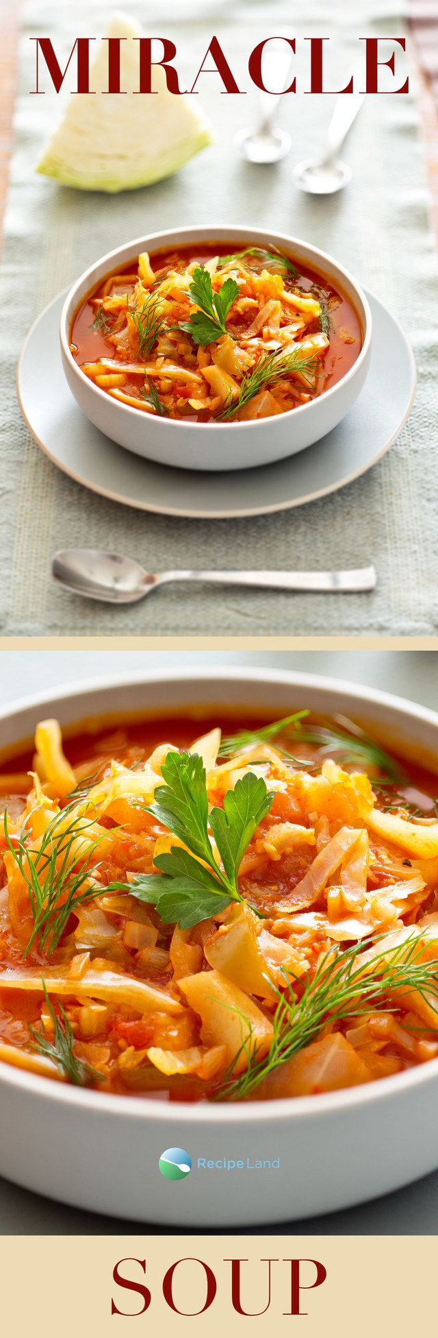 AKA The Dolly Parton diet, or The Cabbage Soup diet. An easy to make low-calorie, low-fat soup.
