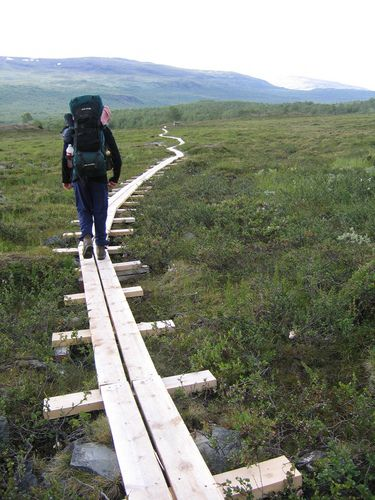 Wood path at Abisko National Park- it is on a bog and if you step off the wood path you could sink.