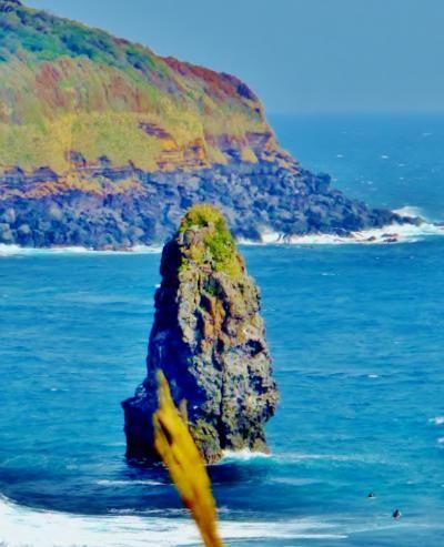 伊豆大島の見晴台からはダイナミックな景観が楽しめる。伊豆大島の観光スポット。