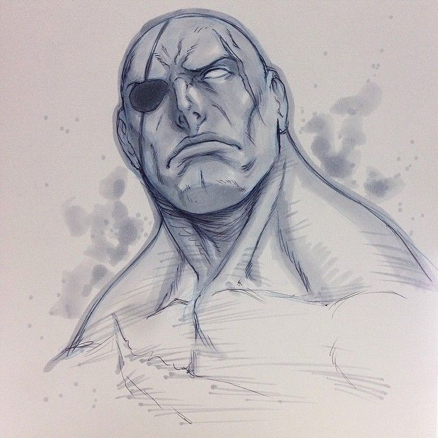 Amazing street fighter portraits by canadian comic artist for Amazing drawing websites