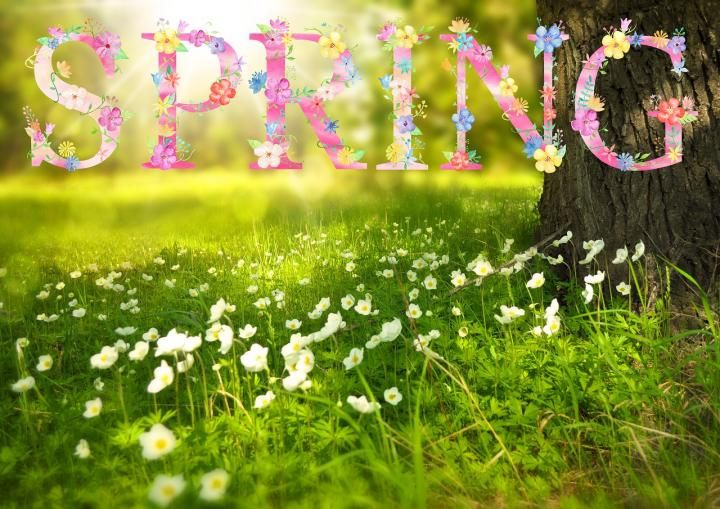 Did you know that the first day of Spring depends upon the time zone you live in? I didn't know this.