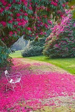 Garden Bench, Truro, Cornwall, Engand