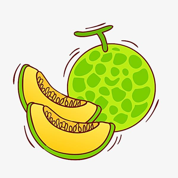 Pin On Melon