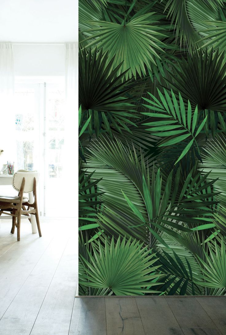 Nieuw: behang met palmbladeren. Geef je kamer in een oogwenk een exotische look! http://www.kekamsterdam.nl/behang/behang-tropisch/ #muursticker #decoration #decoratie