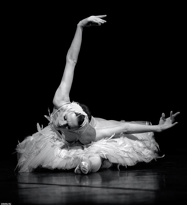 Image result for dying swan ballet stills