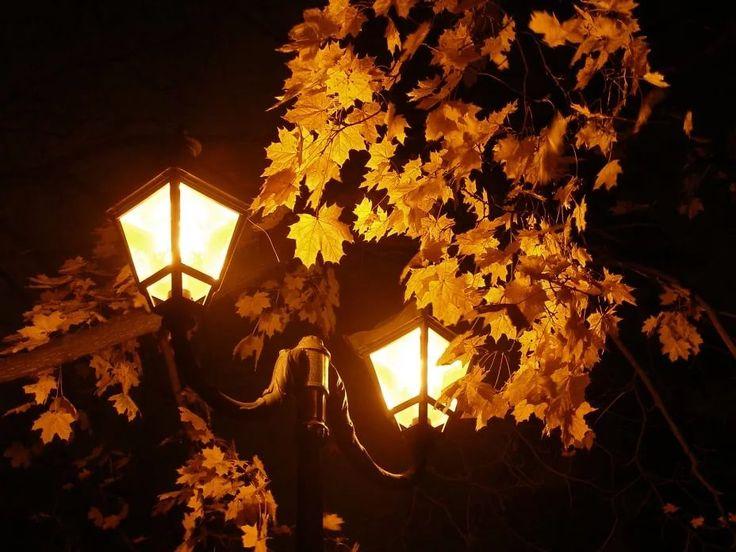 Открытку, открытки осень ночь