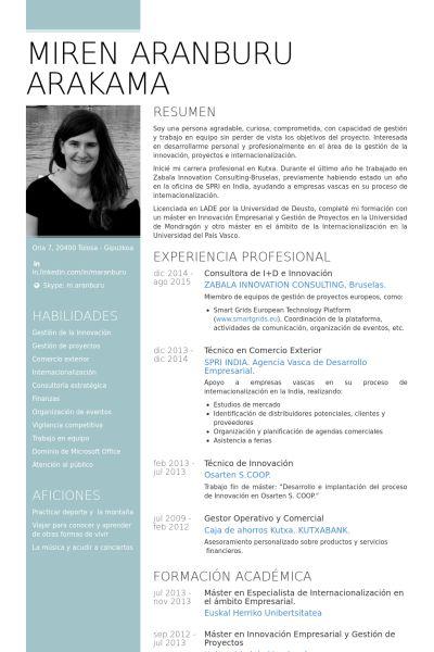 consultora de id e innovacin Ejemplo de currculum