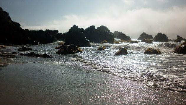 Foto da capa:playa puda oceano pacifico sur chile