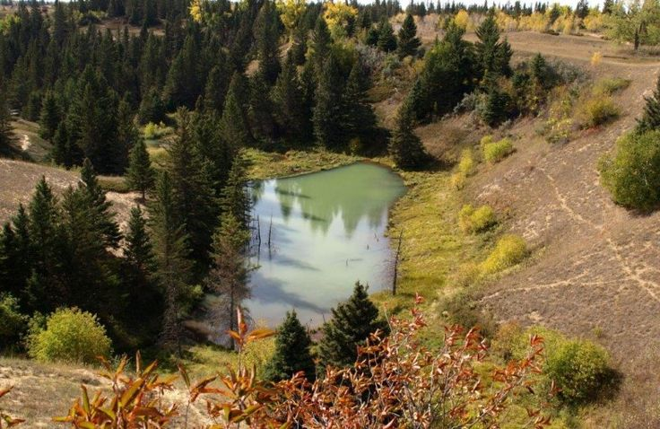 Devil's Punch Bowl at Spruce Woods Prov Park 6 great hiking trails in Manitoba