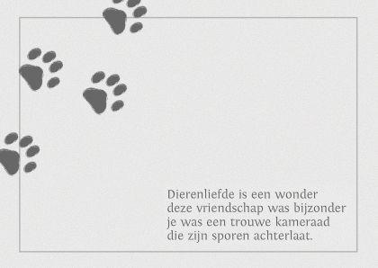 Een rouwkaart voor de trouwe gezelschapsvriend, gebruik dit voorbeeld gedicht of maak hem zelf, tip: plaats boven de tekst nog een foto.