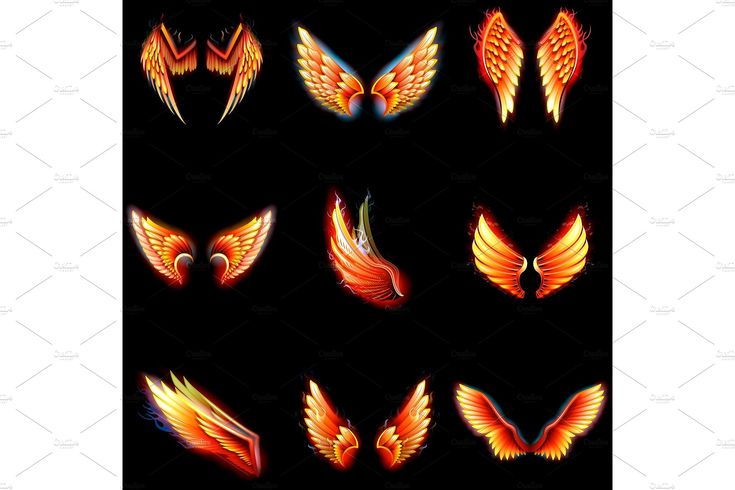 Fire wings phoenix vector winged angel burning fantasy bird fiery wingspan of inferno fireburn in hot hell illustration isolated on black background by KitVector on @creativemarket