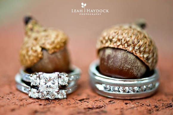 40 Wedding Ring Photography Ideas - how cute!
