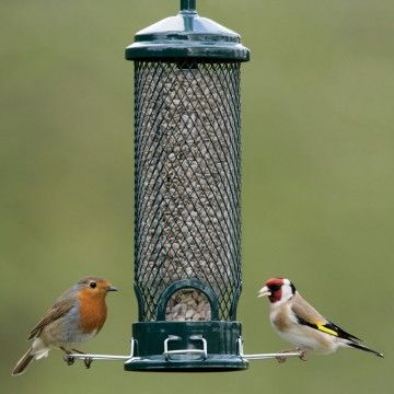 Squirrel Buster Mini bird seed feeder