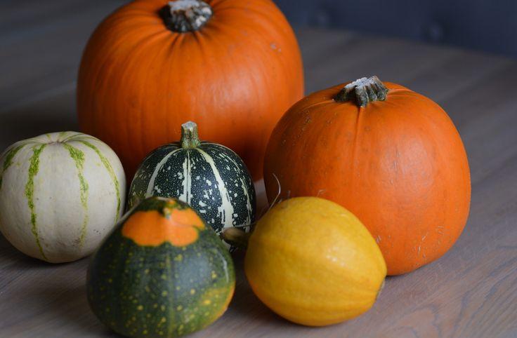 Pumpkin display & prop, Halloween decorations