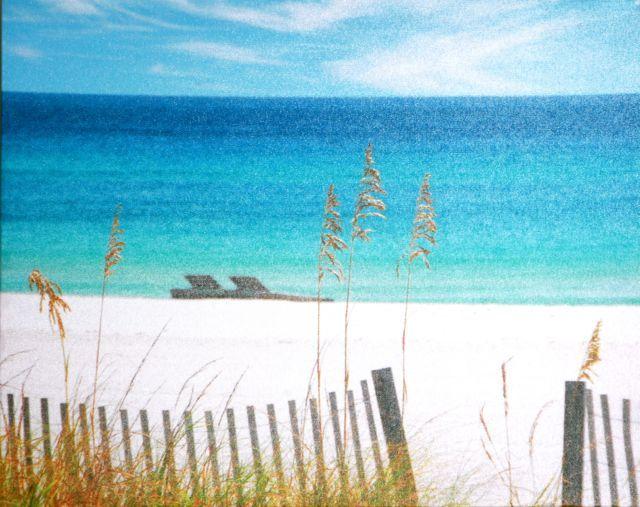 'Summer Days' Canvas
