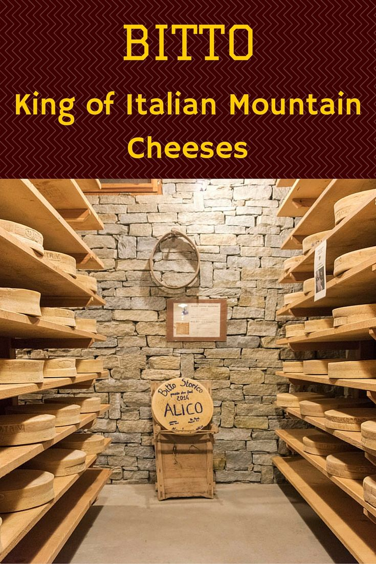 Learn all about Bitto, an Alpine mountain cheese and one of the disappearing traditions of Valtellina in Lombardia!