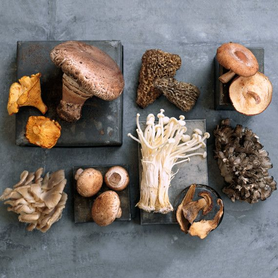 assorted mushroom varieties