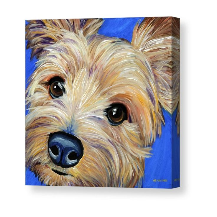 A Pastel Painting Of Lily A Border Terrier Cross Dog Paintings