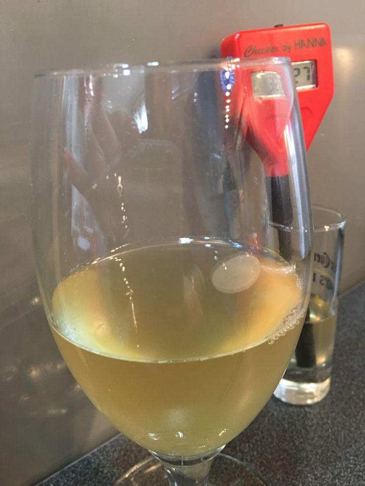 El mosto sin carbonatar de mi primera Berliner Weisse.  Aspecto similar a un vino verdejo.