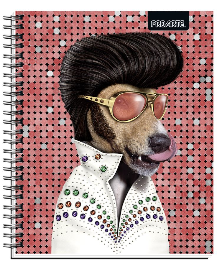 Notebooks Proarte license Pets Rock 2014. This line of notebooks is known Artists, singers and actors that happen to become pets. They are very funny. Meet Pets Rocks in all the best bookstores in Chile and Wallmart and Jumbo Supermarkets. #Pets #Rock #PetsRock #PROARTE #Funny #TheKing #king