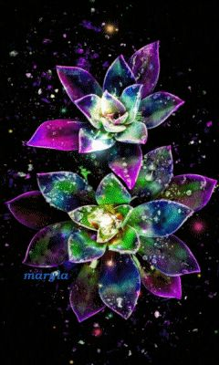 3d Animated Wallpapers For Mobile Free Download Free Animated Rainbow Flowers Mobile Wallpaper By Maryla75