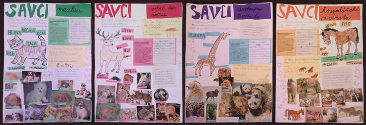 Savci - plakátek - 2. třída