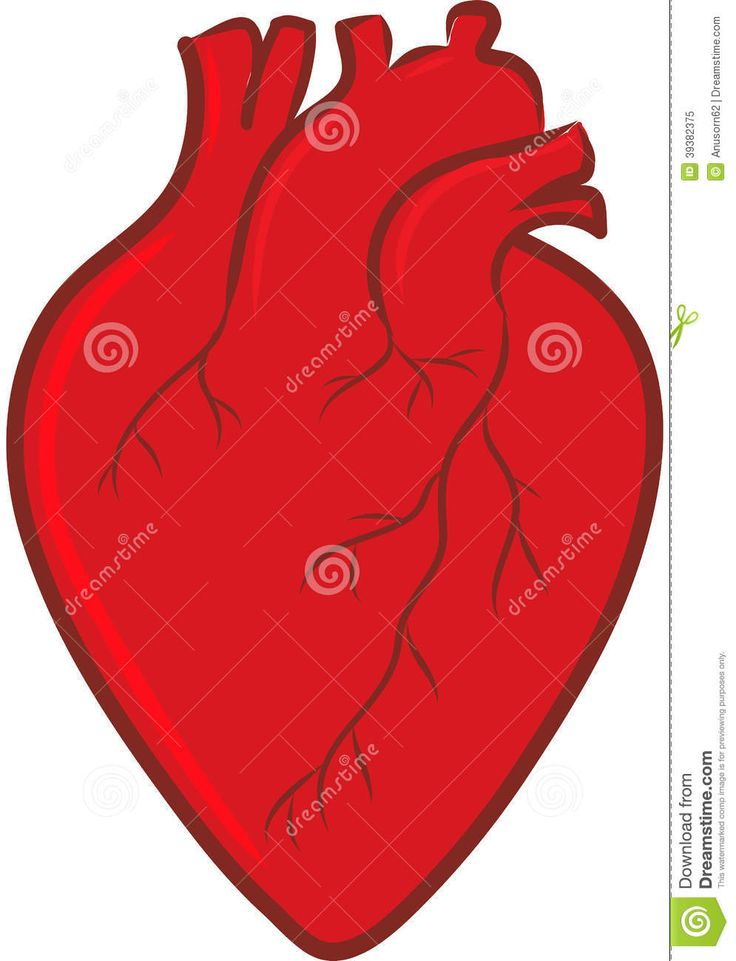 15 best pattern images on pinterest patterns hearts and rh pinterest com Real Heart Drawing Real Human Heart Beating