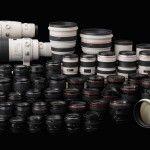 La macro pour moins de 100€ - Solutions alternatives à l'objectif macro pour débuter en photographie