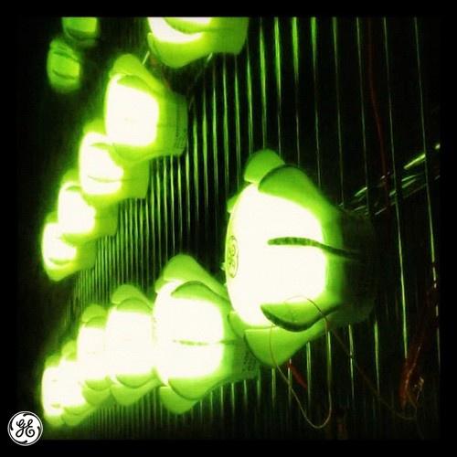 #FACT: LED is short for light-emitting diode.