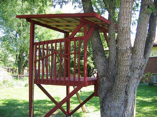 Kids Tree Houses With Zip Line