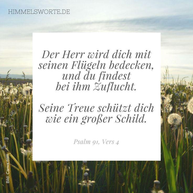 Himmelswort #8 - Der Herr wird dich mit seinen Flügeln bedecken, und du findest bei ihm Zuflucht. Seine Treue schützt dich wie ein großer Schild. Psalm 91, Vers 4. Ps 91,4