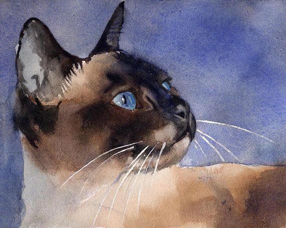 Chocolate Applehead Siamese Cat Art Print of my par rachelsstudio