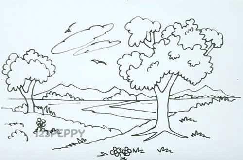 Natural Landscape Drawing Nature