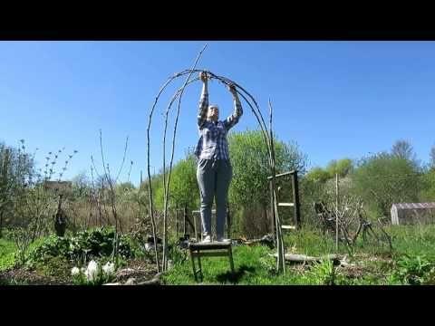 садовая АРКА своими руками / Garden arch from willow twigs - YouTube