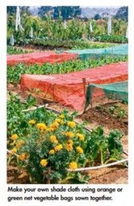 self sufficiency recycle veggie bags for shade cloth