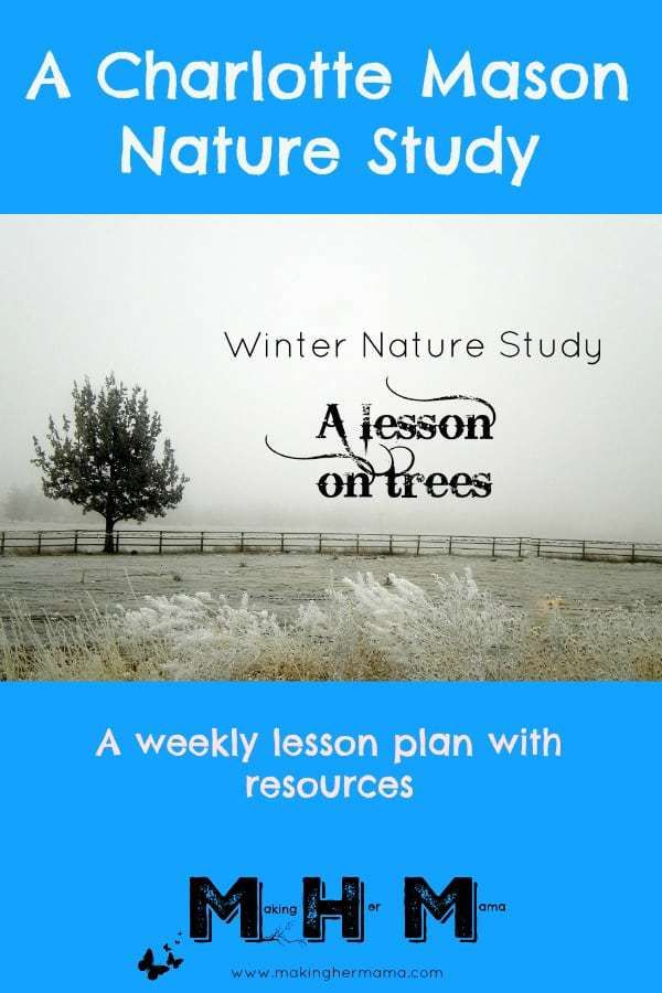 A lesson plan with resources, activities, and art projects. This lesson focusses on trees as part of a winter nature study. Follow the link to view the full lesson plan.