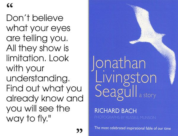 "a literary analysis of jonathan livingston seagull by richard bach Jonathan livingston seagull - jonathan is sick and tired of the boring life in his  sea-gull clan  dove review  also, one character ""damns"" the flock, and dove  never awards our  writer: richard d bach and hall bartlett."