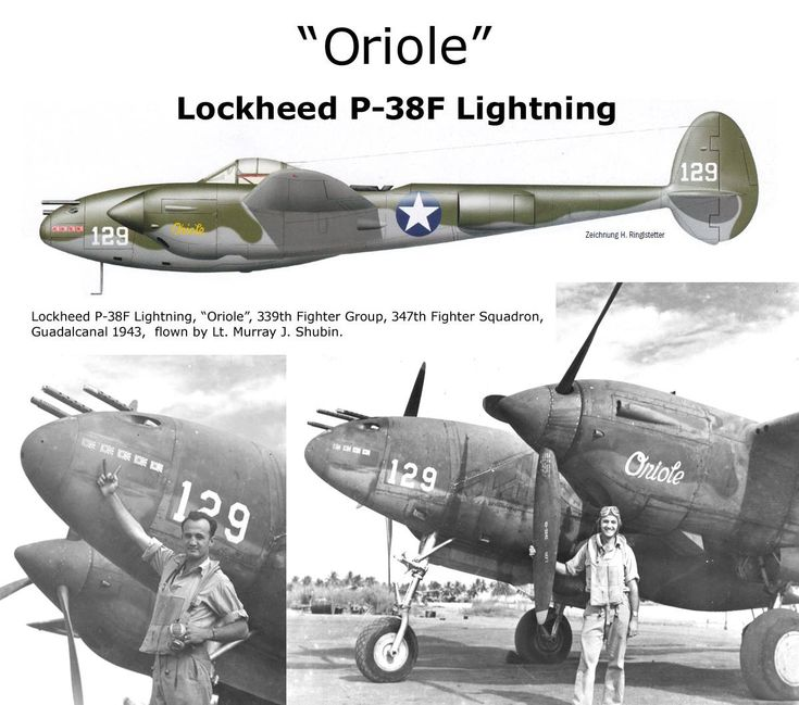 1344 best P-38 images on Pinterest Airplanes, Lighting and Lightning - p&l template
