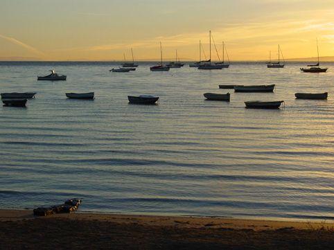 Morgenstimmung auf der Mornington Peninsula