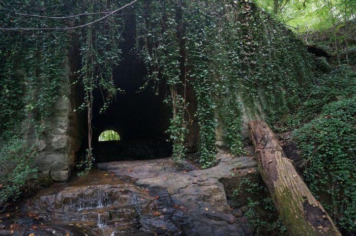 Georgia : Cascade Springs Nature Preserve
