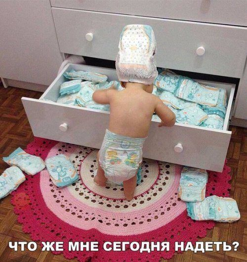 Самые смешные фотомемы дня / Приколы