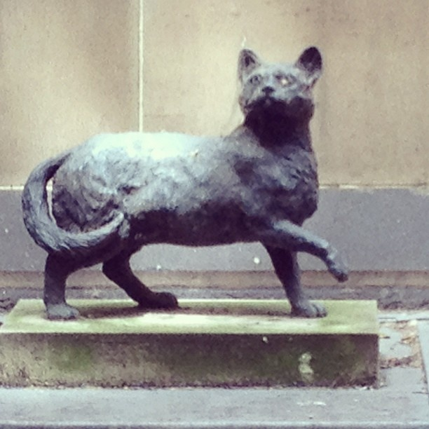 #Instagram photo of the statue of #Trim the Cat outside the Mitchell Library, State Library of NSW