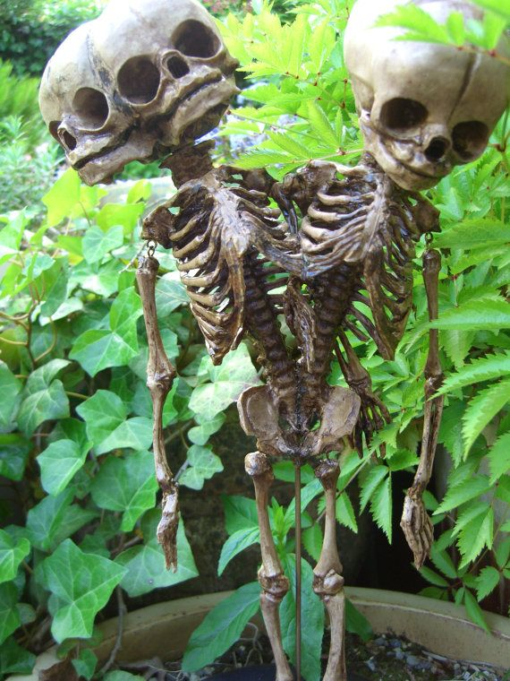 metal conjoined fetal skeleton. Makes great lawn decor!