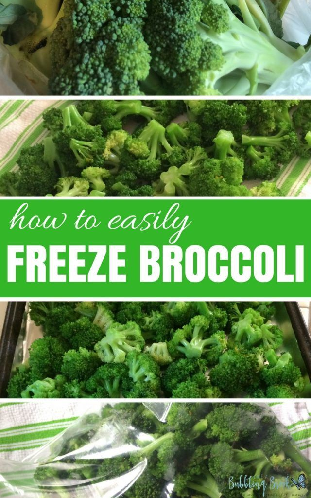 How to Easily Freeze Broccoli --- or, the day freezing broccoli scared me to death :)
