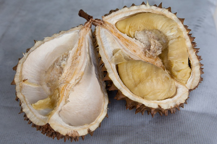 La chair étrange du durian © Quentin Gaudillière