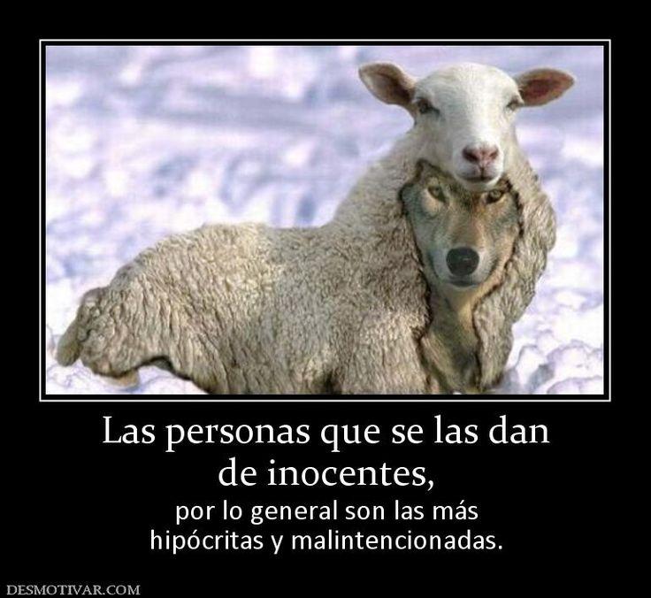 Las personas que se las dan de inocentes,  por lo general son las más hipócritas y malintencionadas.