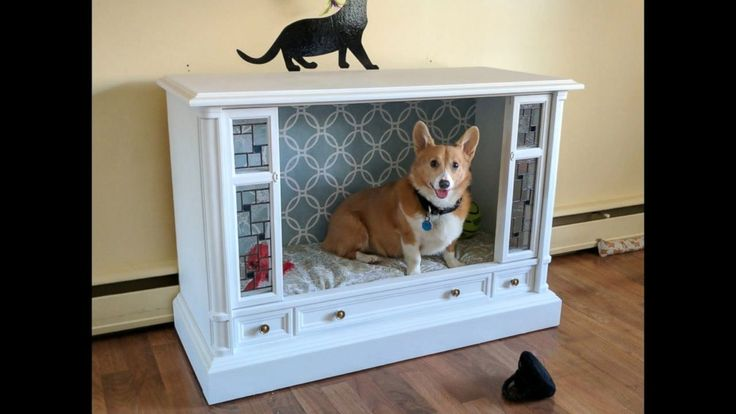 These pups are sleeping in doggy paradise.Corgi owners Jonathan and Lisa, of Havre de Grace, Maryland, transformed a retro TV into this chic dog bed.Their dogs, Buckley, a Corgi, and Cy, a Border Collie/Corgi mix, are enjoying their new digs, but the family's newest addition, a long haired tortoiseshell